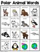 Polar Animal Words
