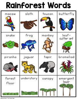 Rainforest Words