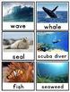 Writing Center Word Cards: Ocean