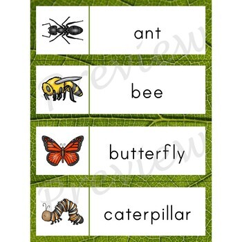 Writing Center Word List ~ Bug Words