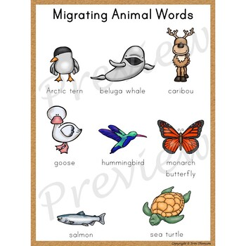 Writing Center Word List ~ Migrating Animal Words