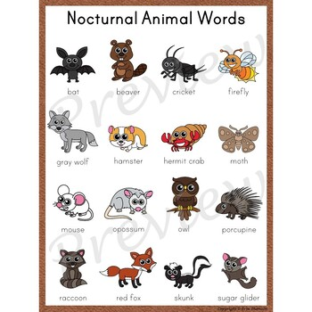 Writing Center Word List ~ Nocturnal Animal Words