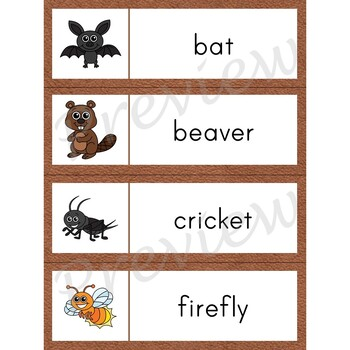 Writing Center Word List Nocturnal Animal Words Tpt
