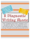 Writing Diagnostic Essay Prompts with Famous Quotes