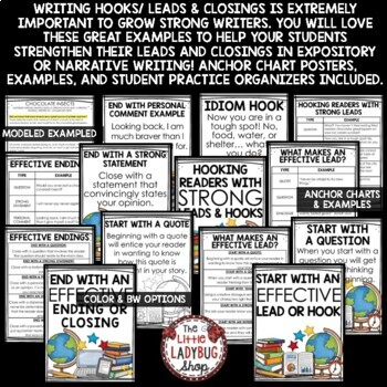 Writing Leads & Hooks for Introduction Paragraph [Posters, Charts & More]
