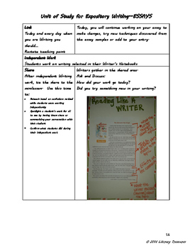 Writing Expository Essays--A Unit of Study