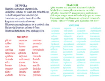 Writing Guides in Spanish (25 copies)