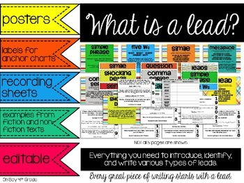 Writing Leads (hooks)... posters, labels, examples, activities, and editable