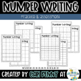 Writing Numbers: Practice & Assessment