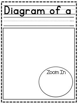 Writing Paper Bundle