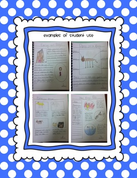 Writing Paper for Nonfiction Units of Study