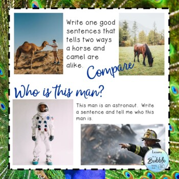 Writing Picture Prompts for RTI or Special Ed  IEP or 504