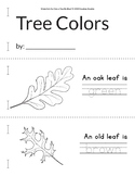 Writing Practice: Supplemental materials for *Can a Tree B