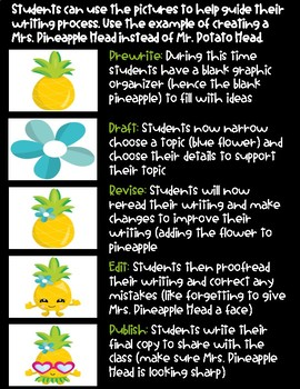 Writing Process: Tropical Themed Classroom