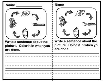 Writing Prompts for Preschool/Kindergarten - Butterflies