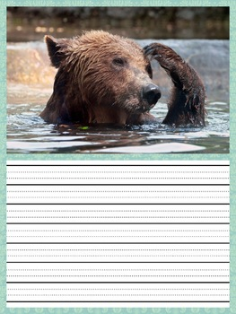 Writing Prompts - ANIMALS vcop