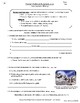 Writing Skills | Appositives & Parenthetical Expressions - 2 Worksheets