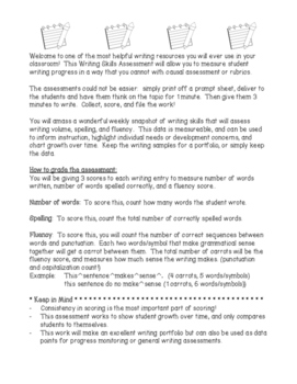 Writing Skills Assessment