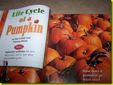 Writing Slides for Scott Foresman Reading Street: Life Cycle of a Pumpkin
