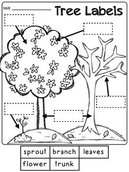 Writing Unit - Planting