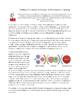Writing, Vocabulary & Literacy in Primary Mathematics