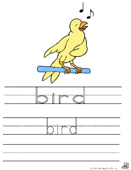 Writing With The Birds