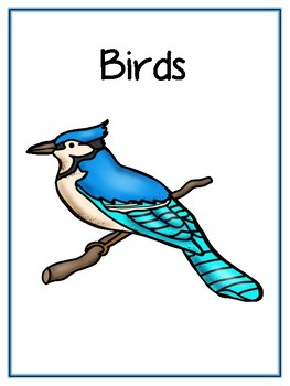 Writing Word File Folder - Bird Animal Thematic Folder - Picture Word Wall