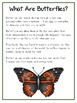 Writing Word File Folder - Butterfly Animal Thematic Folder - Picture Word Wall