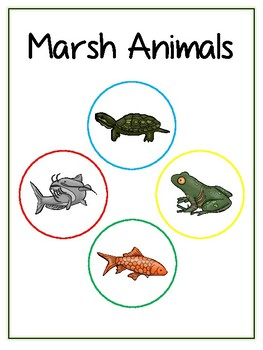 Writing Word File Folder - Marsh Animal Thematic Folder - Picture Word Wall