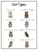 Writing Word File Folder - Owls Animal Thematic Folder - Picture Word Wall