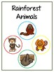 Writing Word File Folder - Rainforest Animal Thematic Folder - Picture Word Wall