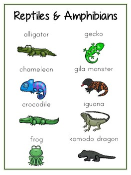 Writing Word File Folder Reptiles & Amphibians Thematic Folder Picture Word Wall