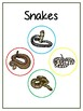 Writing Word File Folder - Snake Animal Thematic Folder - Picture Word Wall