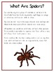 Writing Word File Folder - Spider Animal Thematic Folder - Picture Word Wall