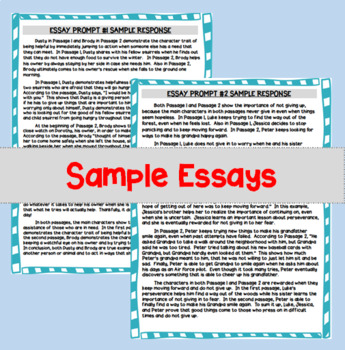 Writing a 5-Paragraph Essay: Organizers, Passages, and Prompts!