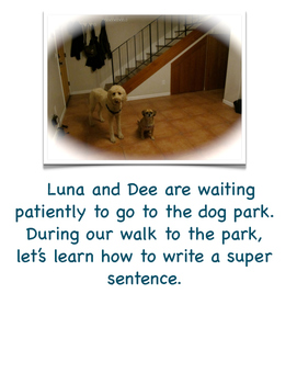 Writing a Complete Sentence (Adventures of Luna and Dee Dee)