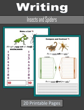 Writing about Insects and Spiders