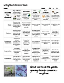 Writing about Literature Rubric - Growth Mindset Themed