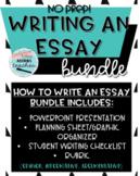 Writing an Essay Bundle