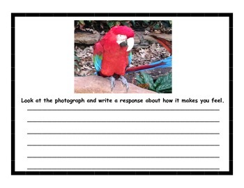 Writing through Photography