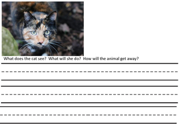 Writing with Pictures and Question Prompts
