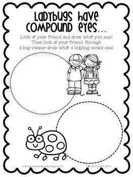 Writing/Reading Comprehension {All about LADYBUGS} Research Informational Text