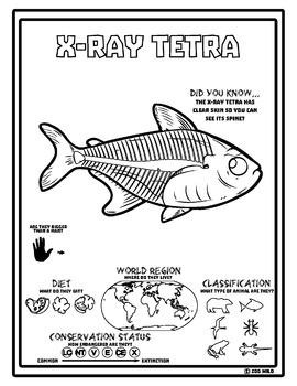 X-Ray Tetra -- 10 Resources -- Coloring Pages, Reading & Activities