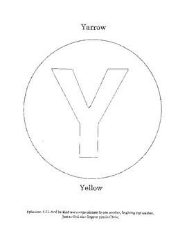 Y - Yarrow