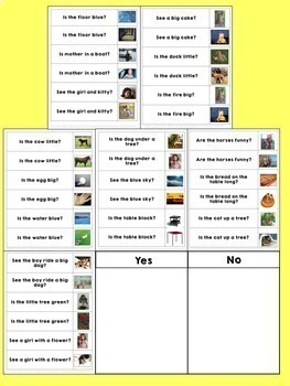 Sight Word Sorting: Yes-No Questions 2