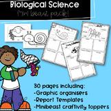 Year 1 Australian Curriculum Minibeasts Research Pack