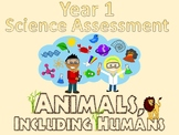 Year 1 Science Assessment: Animals, Including Humans
