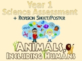 Year 1 Science Assessment: Animals, Including Humans + Poster
