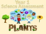 Year 1 Science Assessment: Plants