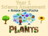 Year 1 Science Assessment: Plants + Poster